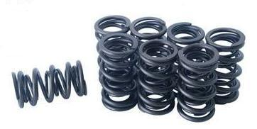 Racing dual valve springs set of 8
