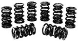 Scat Dual heavy duty valve springs